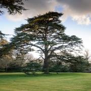 English Heritage - Osborne House