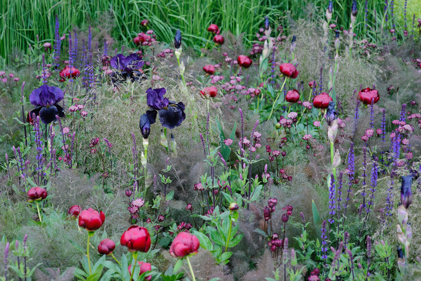 Better Homes And Gardens Magazine >> BBC Gardeners' World Photography   Jason Ingram   Bristol Photographer of Garden, Gardens