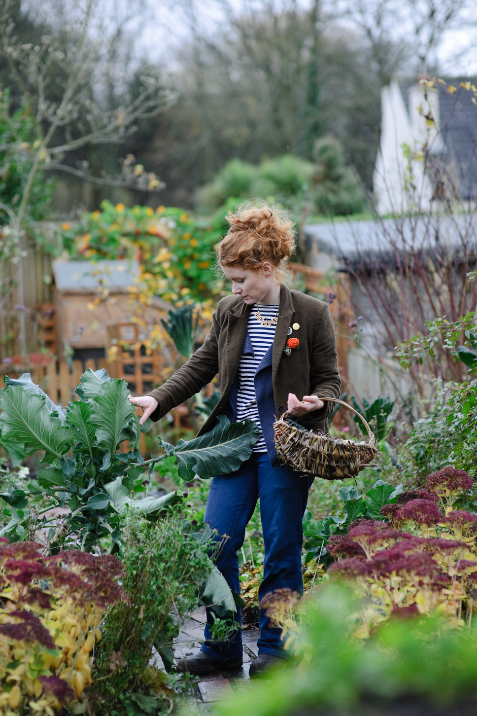 Bbc Gardeners World Photography Jason Ingram Bristol