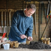 Toby Buckland sowing tomato seeds