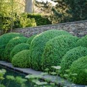 Laurent-Perrier Garden Designed by: Tom Stuart-Smith - Chelsea Flower Show