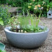 Which? Gardening - Ponds in Pots - Designed by : Linda Smith, Waterside Nurseries