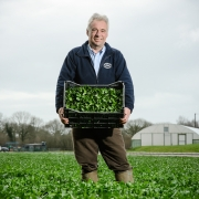 The Watercress Co - Tim Jesty