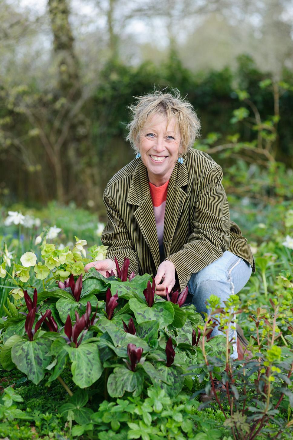 Carol S Garden: Bristol Photographer Of Gardens