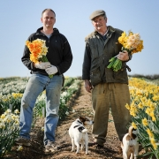 Ron and Adrian Scamp - Heritage Daffodils