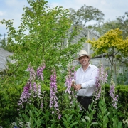 Terry Baker with Digitalis pupurea 'Gloxinioides' - The Botanic Nursery