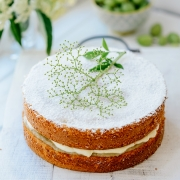 Grow Your Own Cake by Holly Farrell