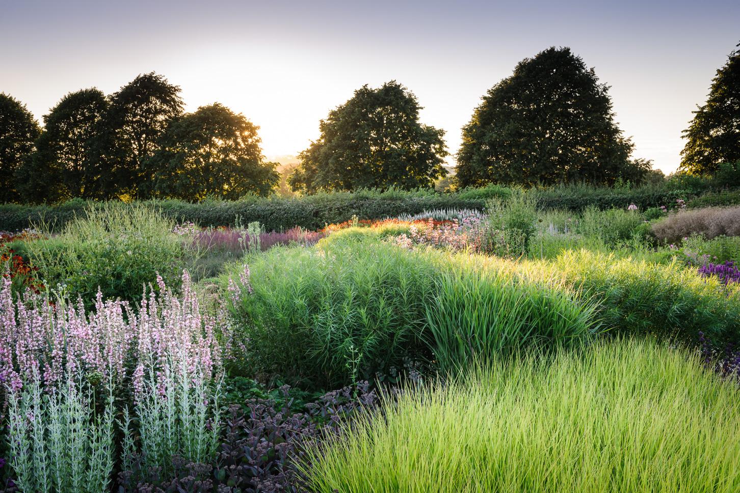 Piet Oudolf Field - Hauser & Wirth, Durslade Farm, Bruton, Somerset