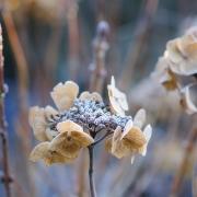 Le Manoir aux Quat'Saisons - Winter