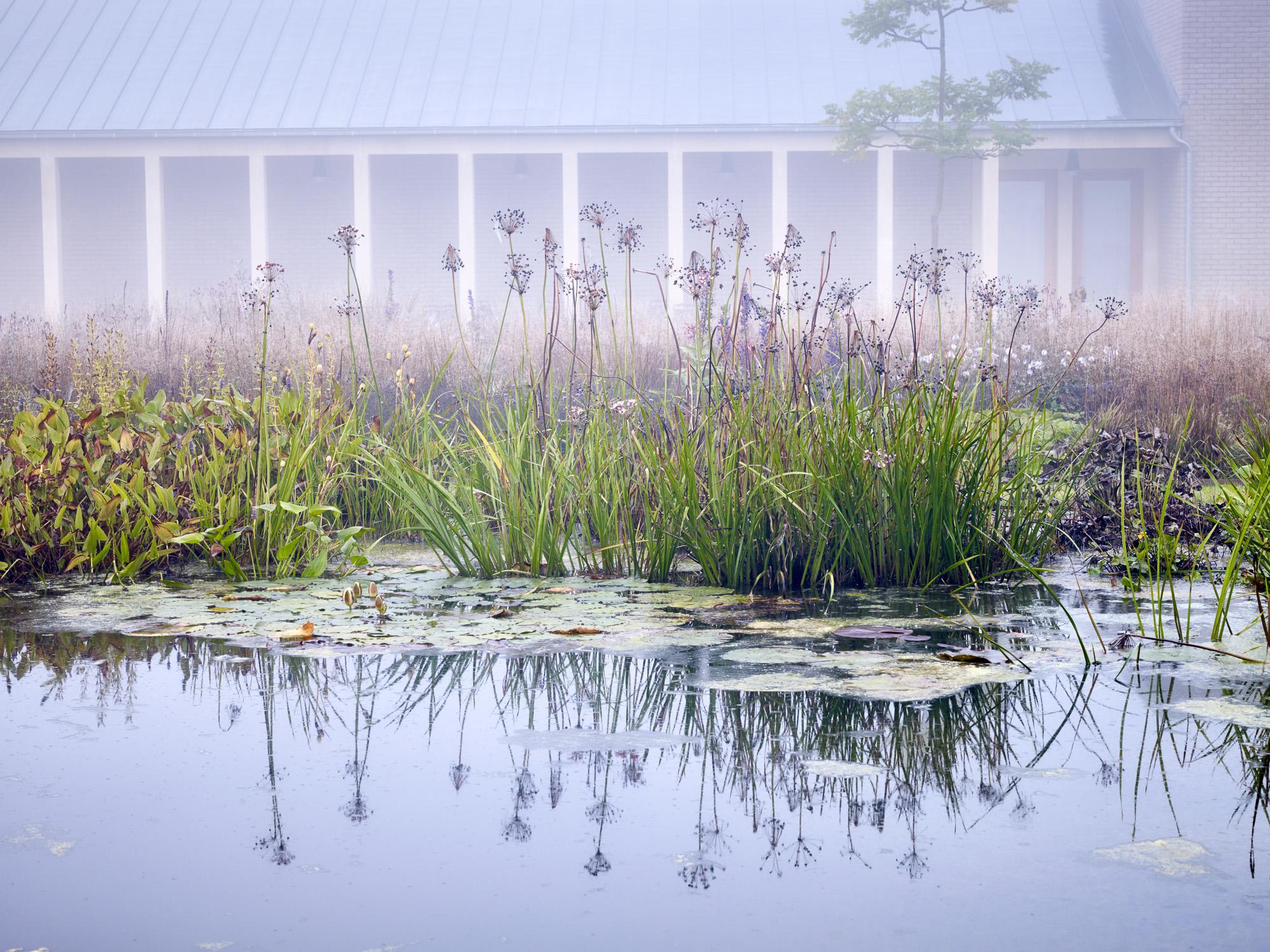 Piet Oudolf Garden - Hauser & Wirth, Bruton, Somerset (September 2015)