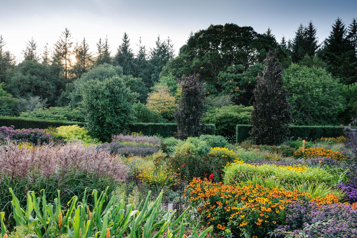 RHS Garden Rosemoor - Hot Garden