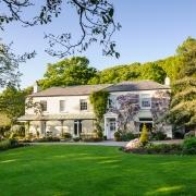 RHS Garden Rosemoor - Wisteria on Rosemoor House