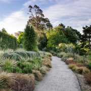 RHS Hyde Hall - Australian / New Zealand Garden